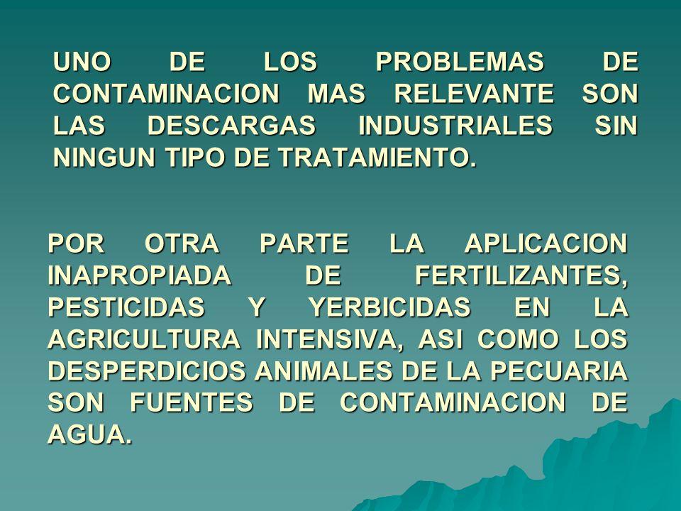 UNO DE LOS PROBLEMAS DE CONTAMINACION MAS RELEVANTE SON LAS DESCARGAS INDUSTRIALES SIN NINGUN TIPO DE TRATAMIENTO.