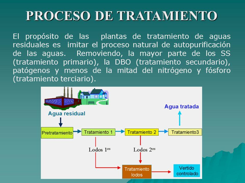 PROCESO DE TRATAMIENTO