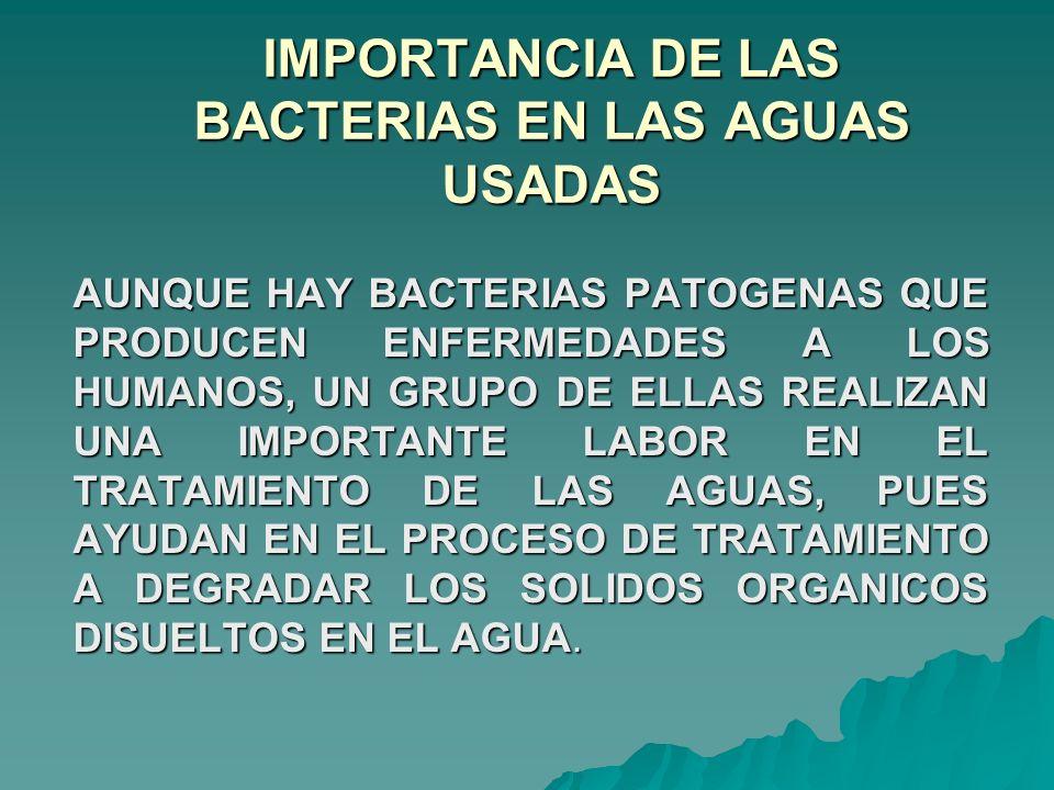 IMPORTANCIA DE LAS BACTERIAS EN LAS AGUAS USADAS