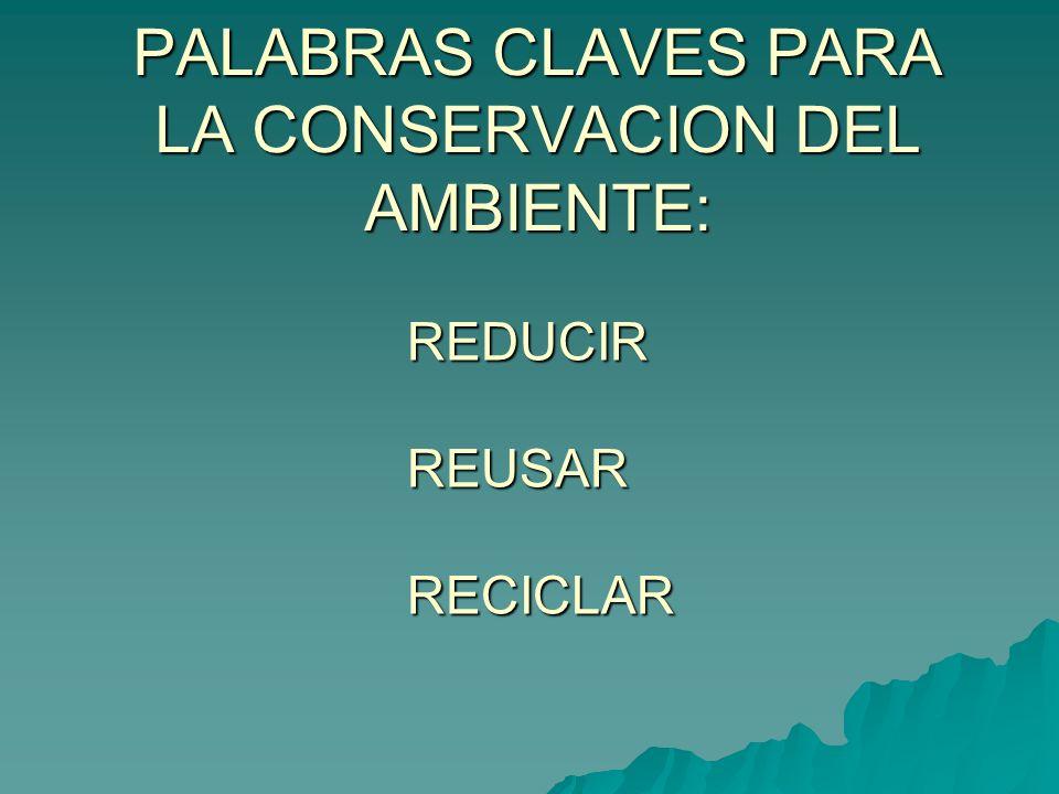 PALABRAS CLAVES PARA LA CONSERVACION DEL AMBIENTE: