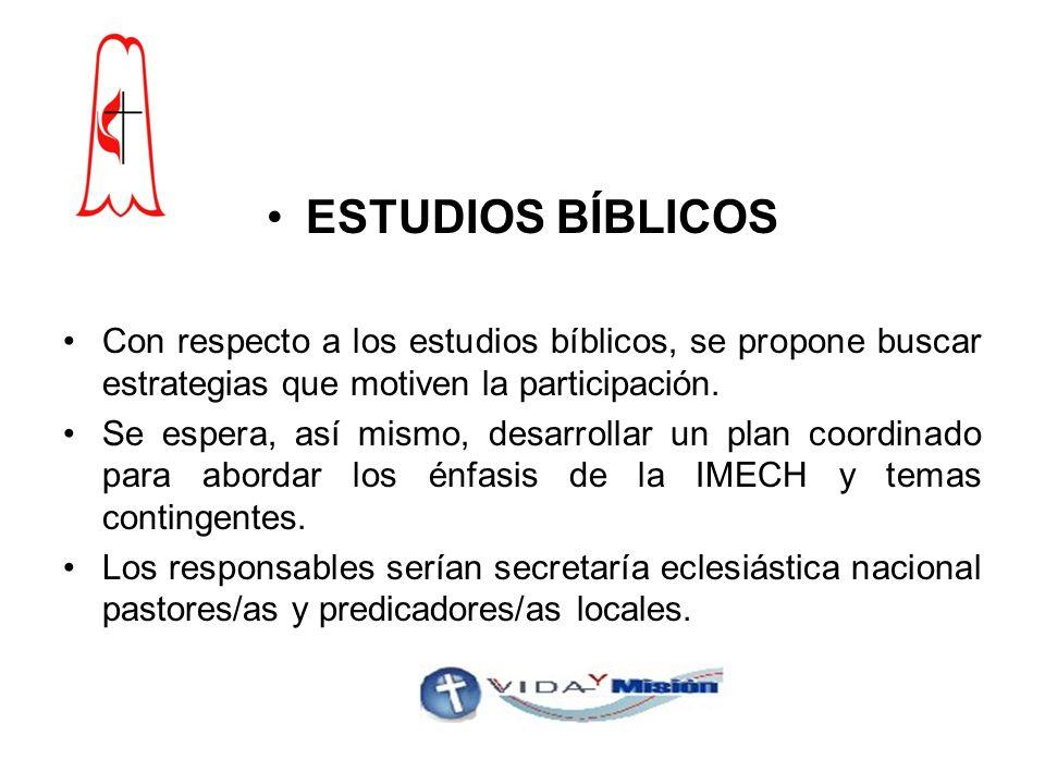 ESTUDIOS BÍBLICOS Con respecto a los estudios bíblicos, se propone buscar estrategias que motiven la participación.