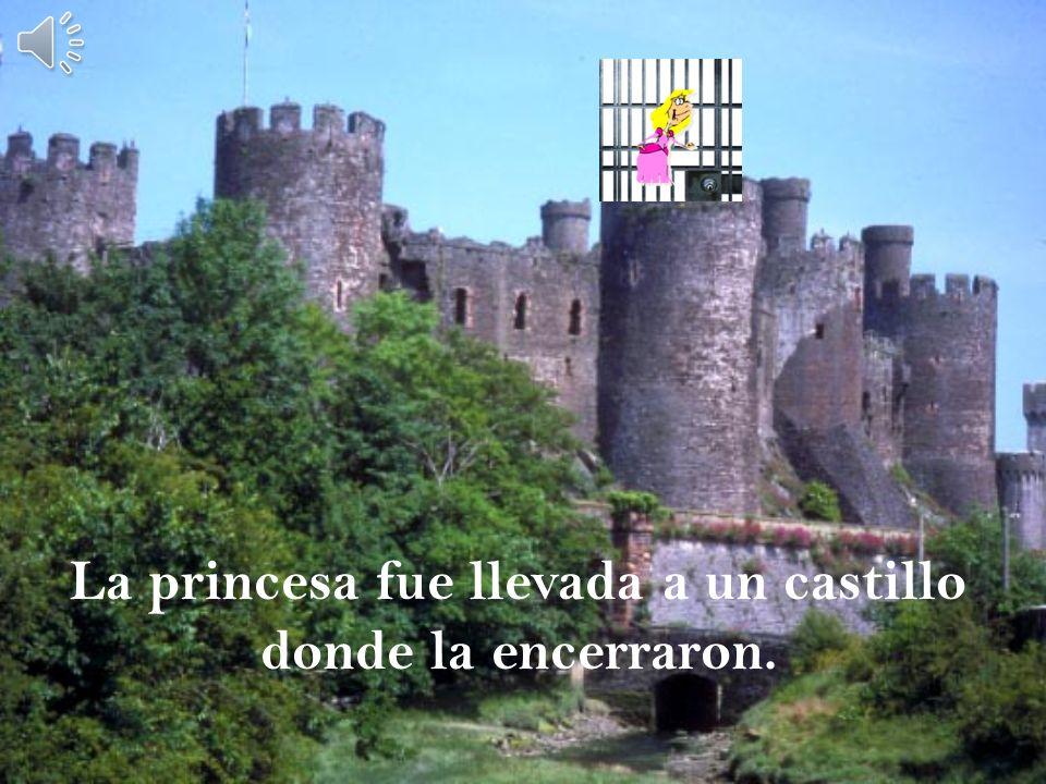 La princesa fue llevada a un castillo donde la encerraron.