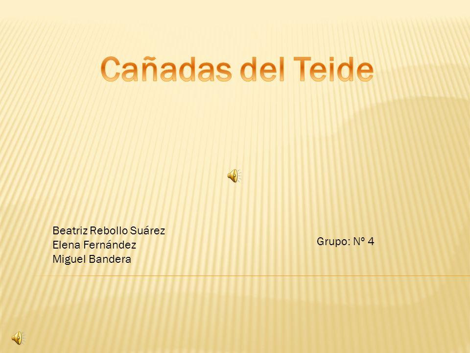 Cañadas del Teide Beatriz Rebollo Suárez Elena Fernández Grupo: Nº 4