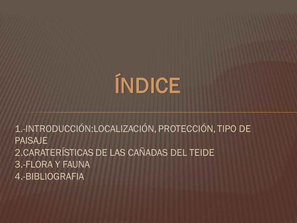 ÍNDICE 1.-INTRODUCCIÓN:LOCALIZACIÓN, PROTECCIÓN, TIPO DE PAISAJE 2.CARATERÍSTICAS DE LAS CAÑADAS DEL TEIDE 3.-FLORA Y FAUNA 4.-BIBLIOGRAFIA.