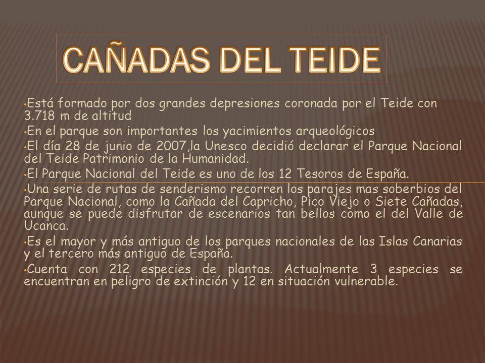 CAÑADAS DEL TEIDE Está formado por dos grandes depresiones coronada por el Teide con 3.718 m de altitud.