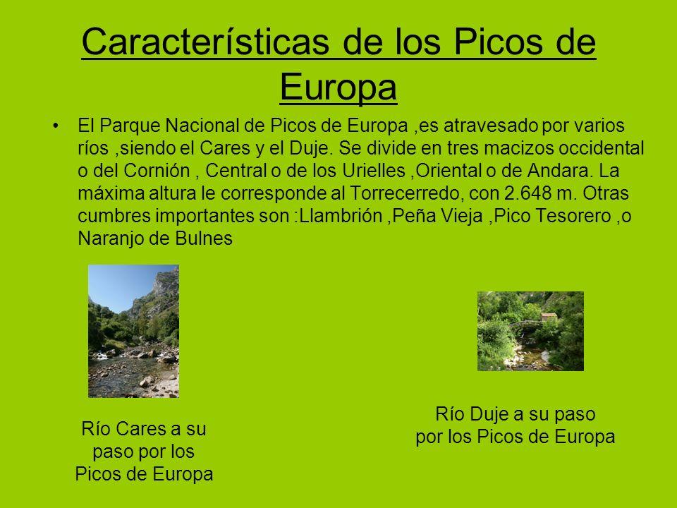 Características de los Picos de Europa
