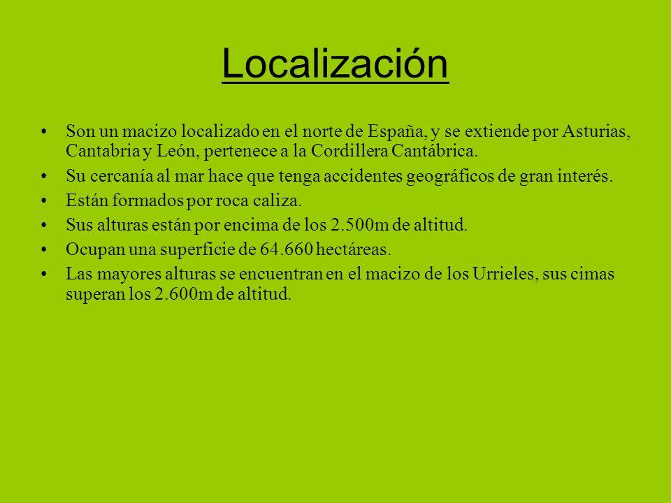 Localización Son un macizo localizado en el norte de España, y se extiende por Asturias, Cantabria y León, pertenece a la Cordillera Cantábrica.