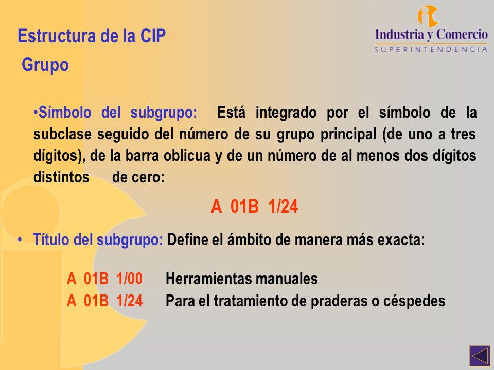 Estructura de la CIP Grupo