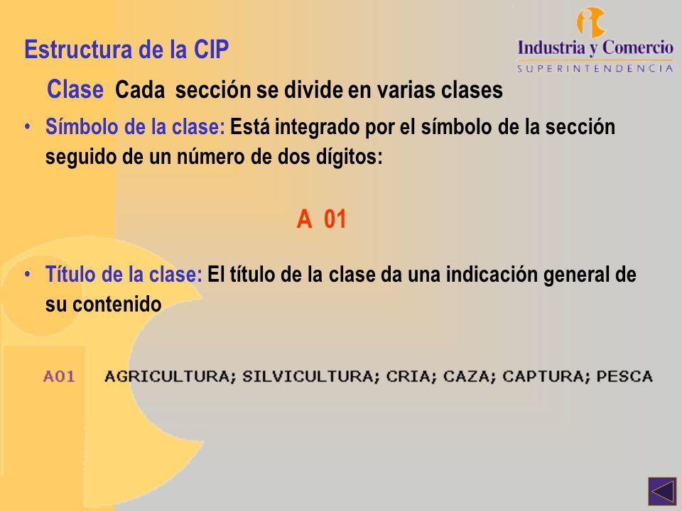 Clase Cada sección se divide en varias clases