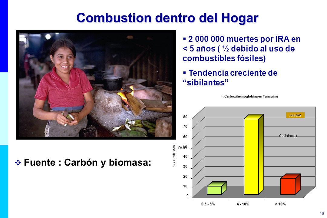 Combustion dentro del Hogar
