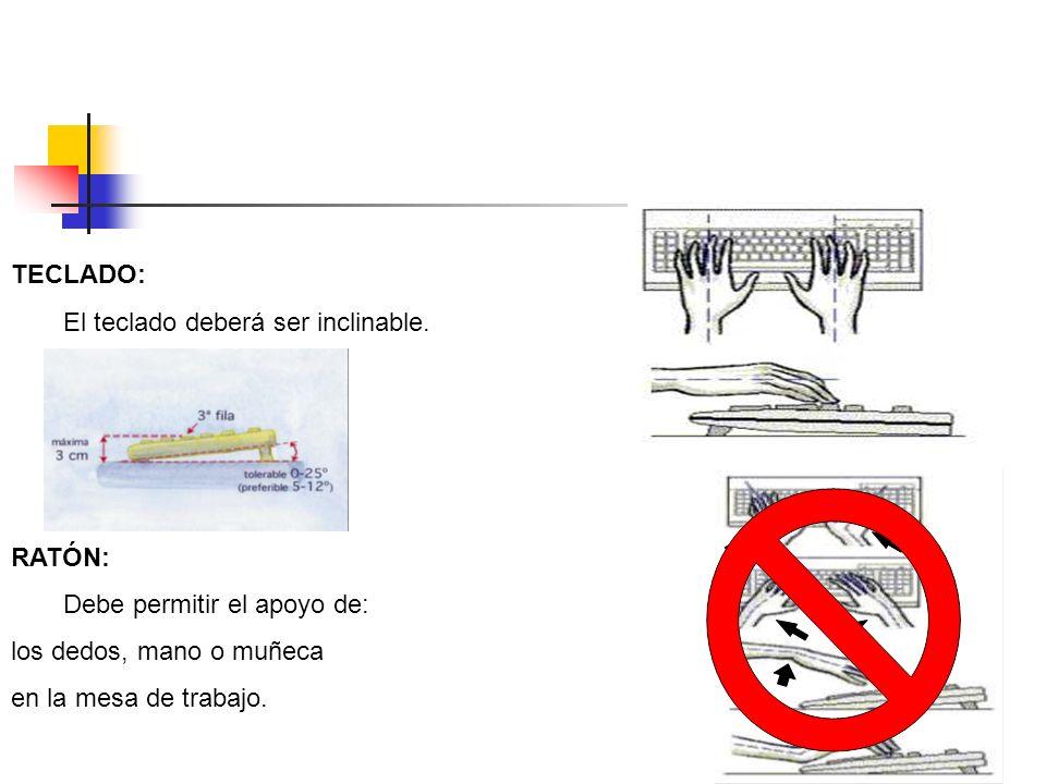 TECLADO: El teclado deberá ser inclinable. RATÓN: Debe permitir el apoyo de: los dedos, mano o muñeca.
