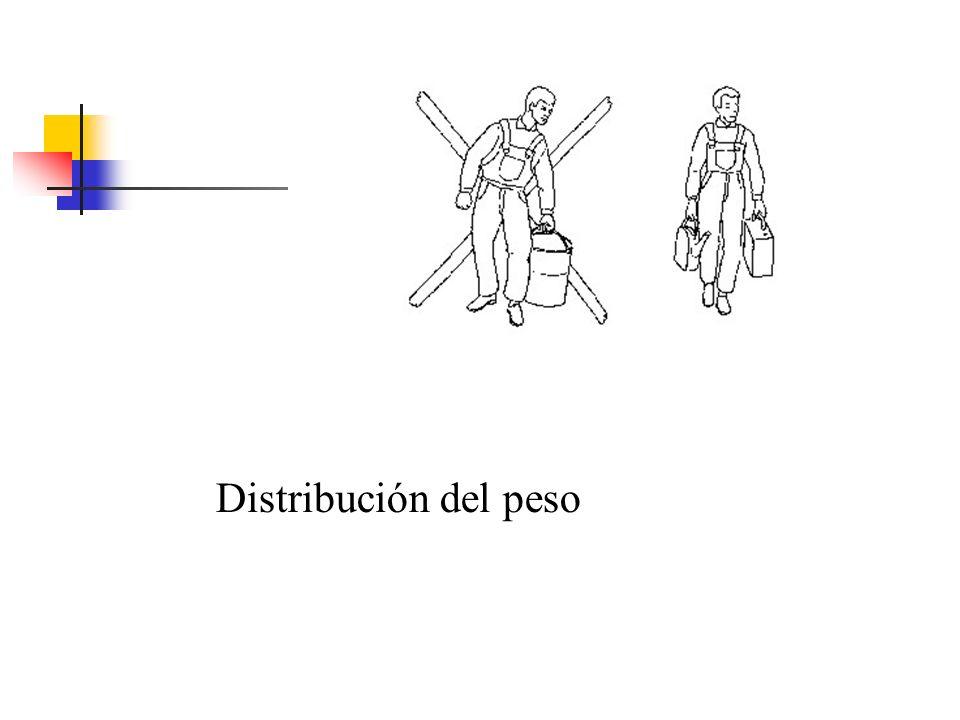 Distribución del peso