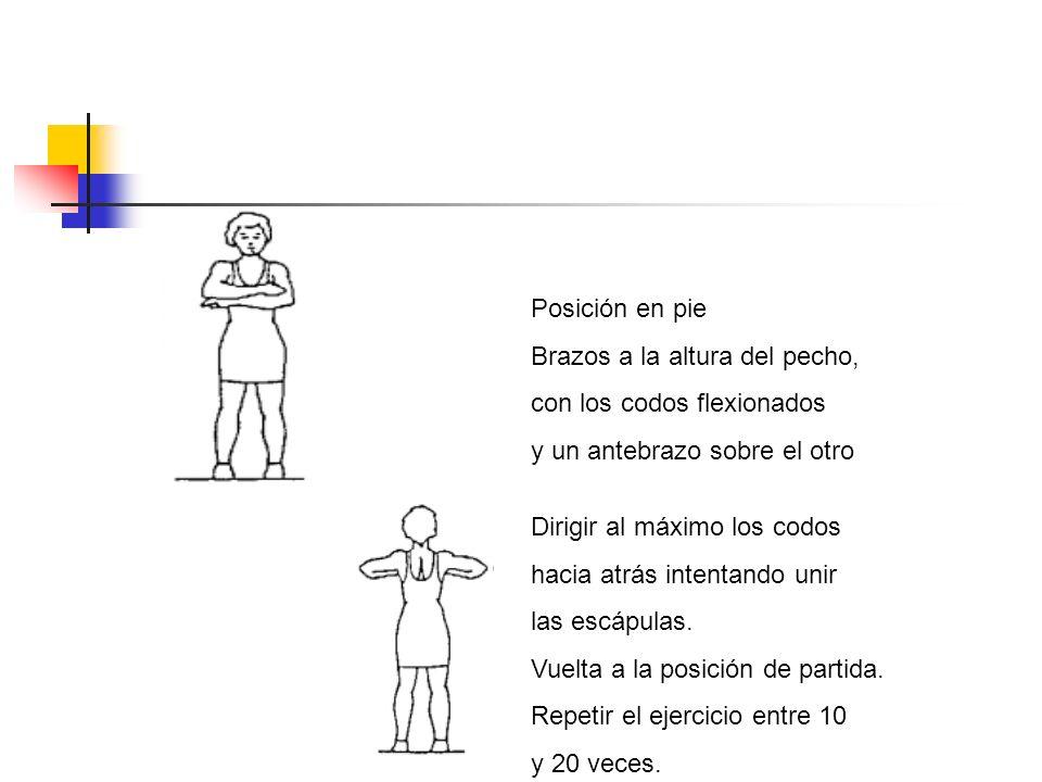 Posición en pie Brazos a la altura del pecho, con los codos flexionados. y un antebrazo sobre el otro.