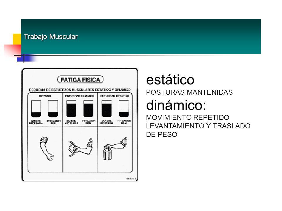 estático dinámico: Trabajo Muscular POSTURAS MANTENIDAS