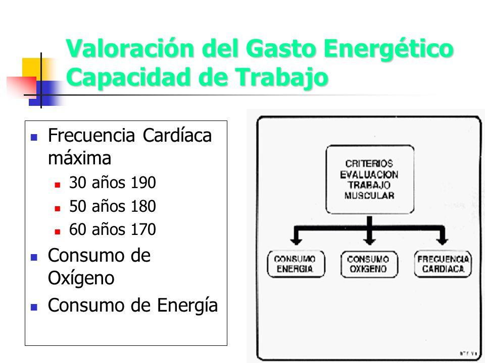 Valoración del Gasto Energético Capacidad de Trabajo