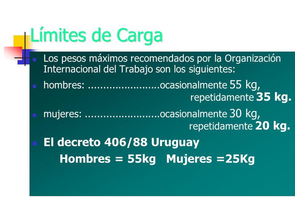 Límites de Carga El decreto 406/88 Uruguay