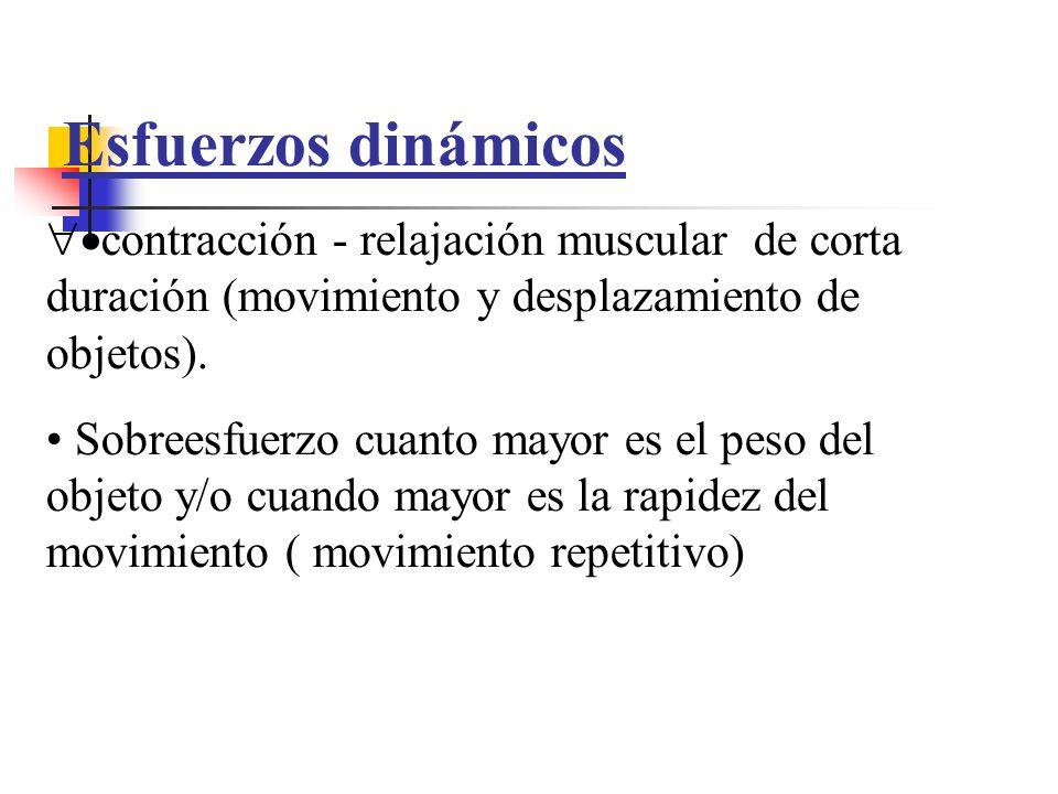 Esfuerzos dinámicos contracción - relajación muscular de corta duración (movimiento y desplazamiento de objetos).