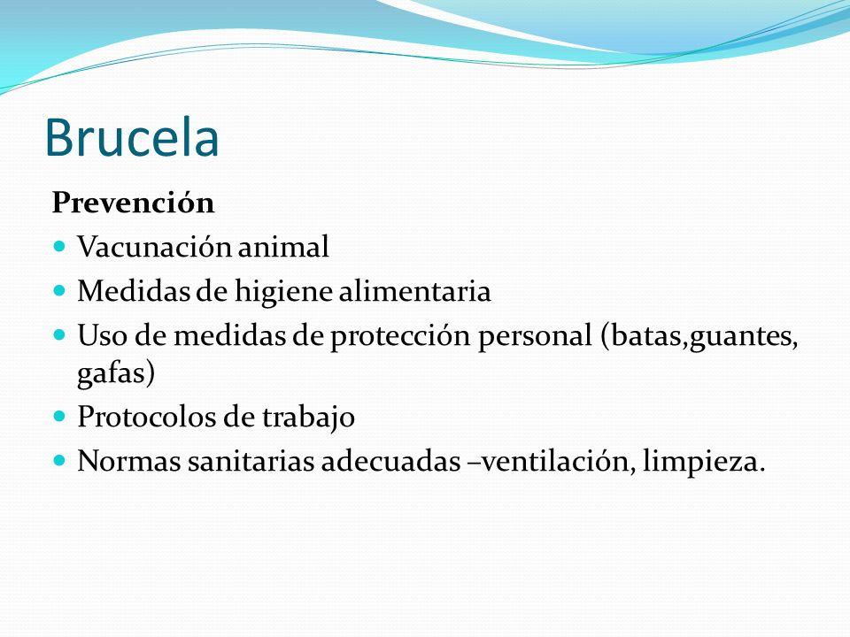 Brucela Prevención Vacunación animal Medidas de higiene alimentaria