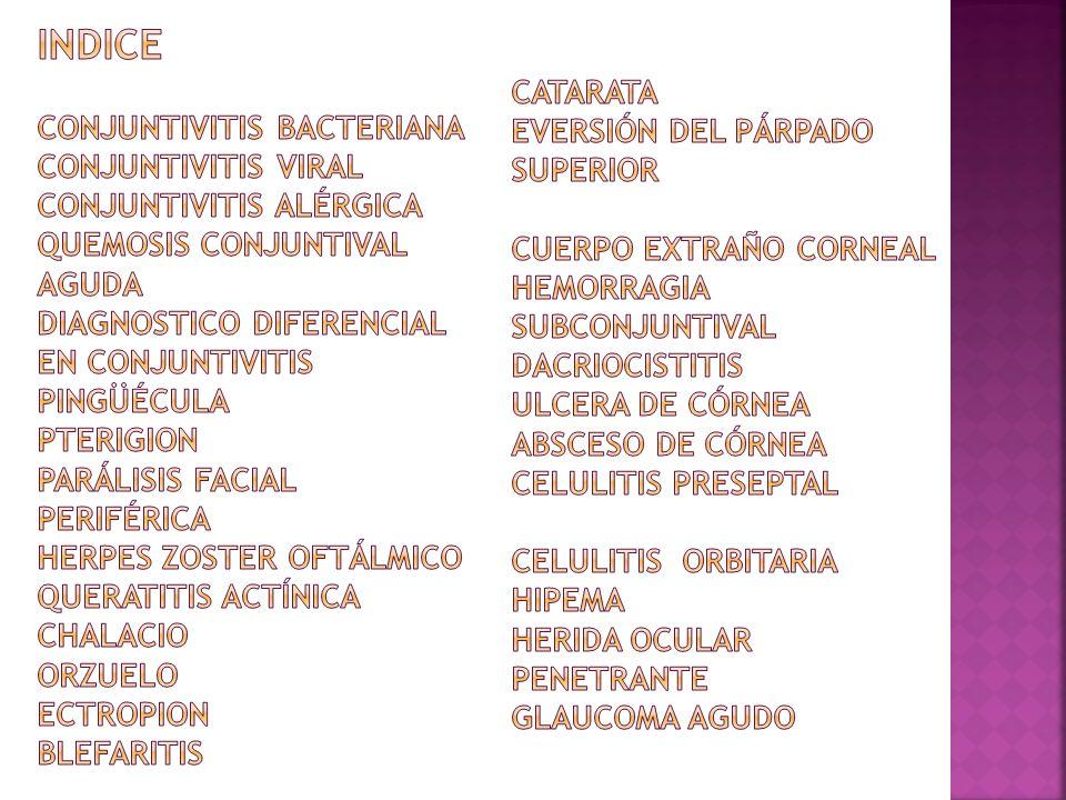 INDICE Conjuntivitis bacteriana Conjuntivitis viral Conjuntivitis alérgica Quemosis conjuntival aguda Diagnostico diferencial en conjuntivitis Pingüécula Pterigion Parálisis facial periférica Herpes Zoster oftálmico Queratitis actínica Chalacio Orzuelo Ectropion Blefaritis Catarata Eversión del párpado superior Cuerpo extraño corneal Hemorragia subconjuntival Dacriocistitis Ulcera de córnea Absceso de córnea Celulitis preseptal Celulitis orbitaria Hipema Herida ocular penetrante Glaucoma agudo