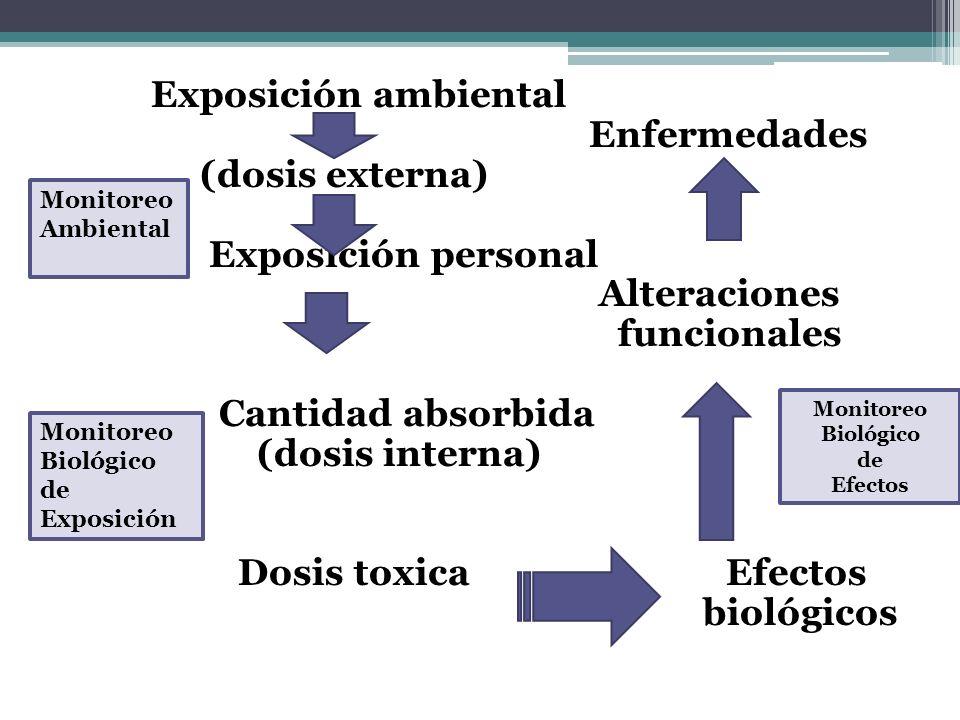 Enfermedades (dosis externa) Exposición personal Alteraciones