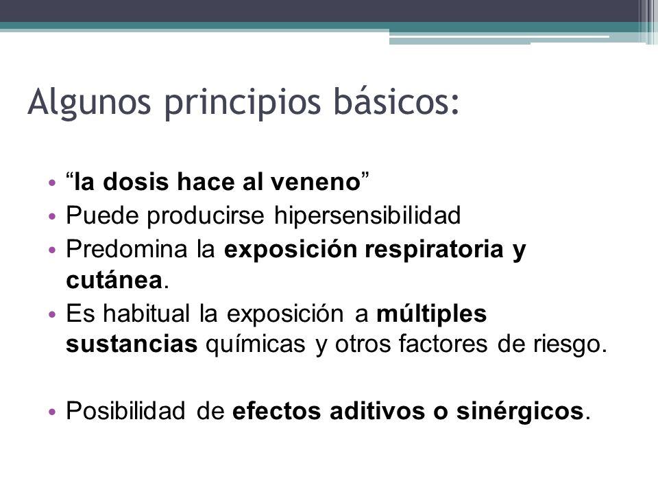 Algunos principios básicos: