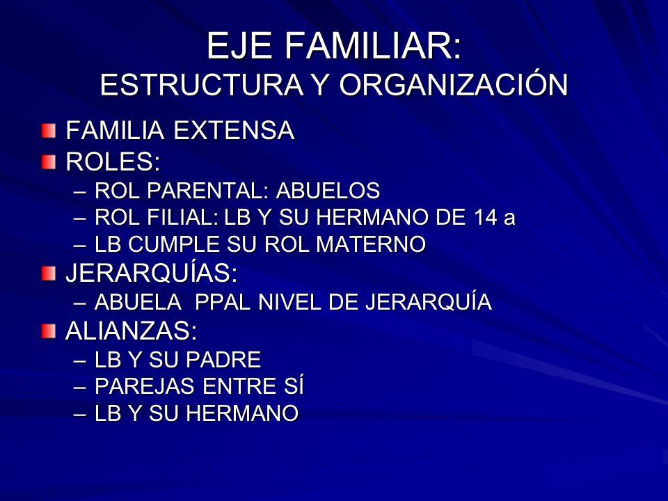 EJE FAMILIAR: ESTRUCTURA Y ORGANIZACIÓN