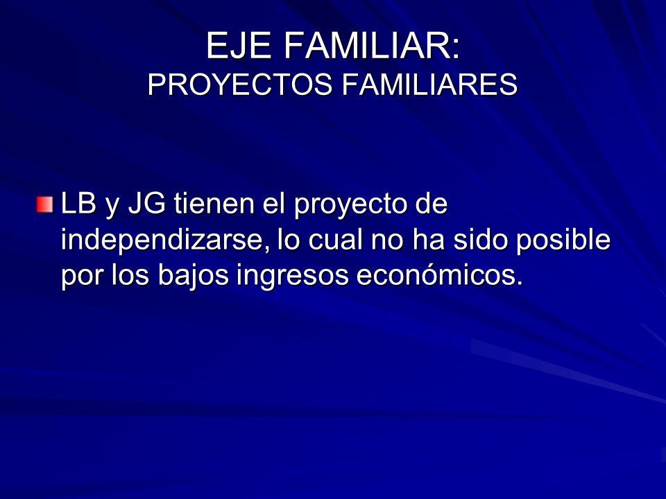 EJE FAMILIAR: PROYECTOS FAMILIARES