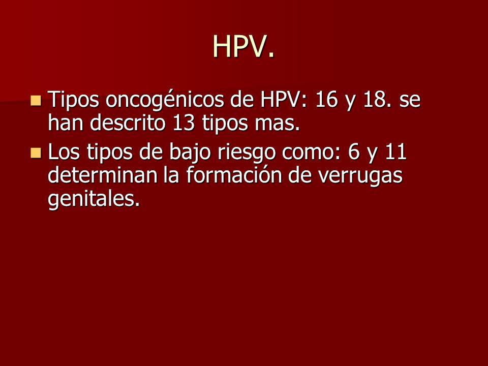HPV. Tipos oncogénicos de HPV: 16 y 18. se han descrito 13 tipos mas.