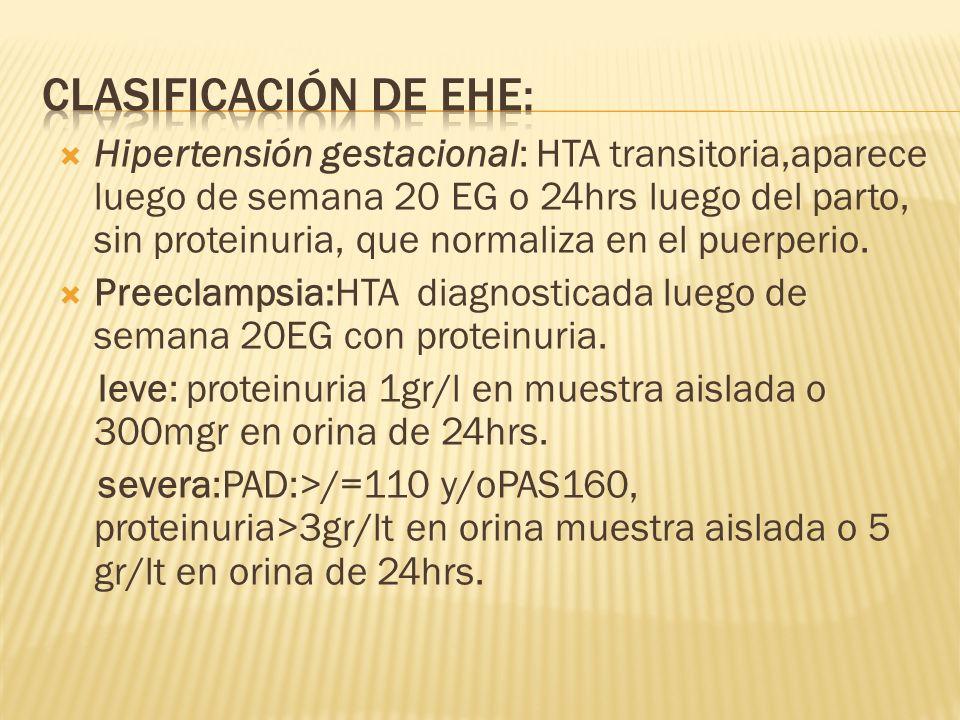 CLASIFICACIÓN DE EHE:
