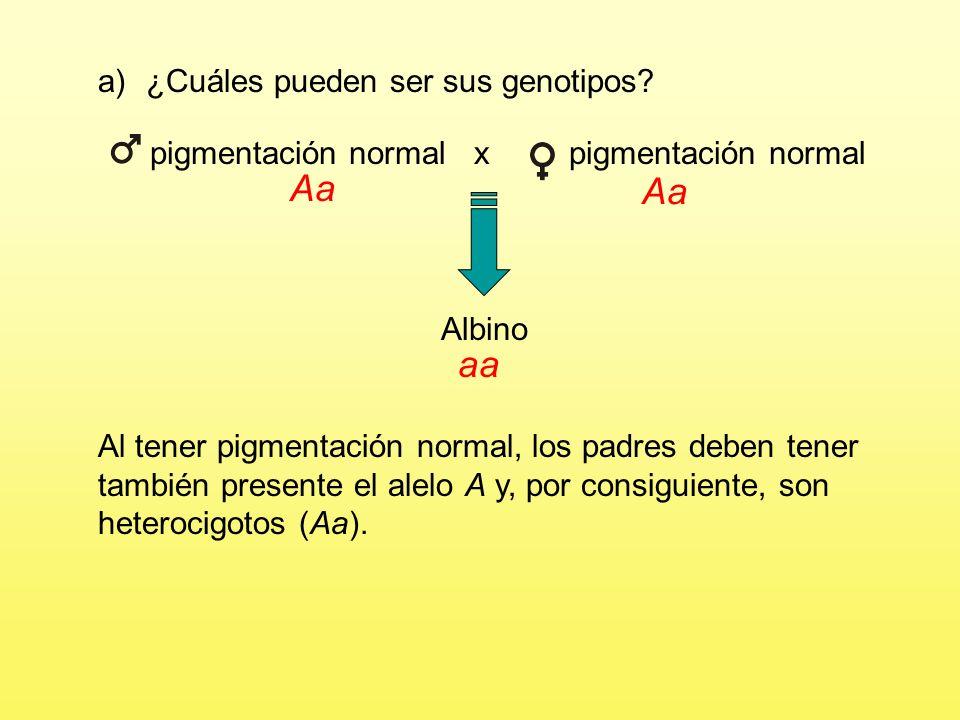 pigmentación normal x pigmentación normal