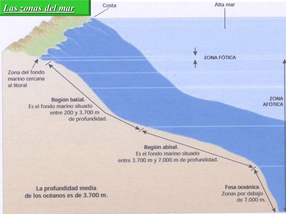 Las zonas del mar
