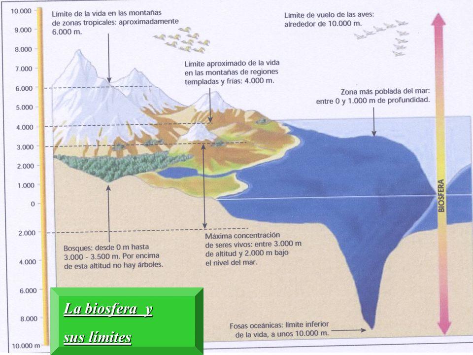 La biosfera y sus límites