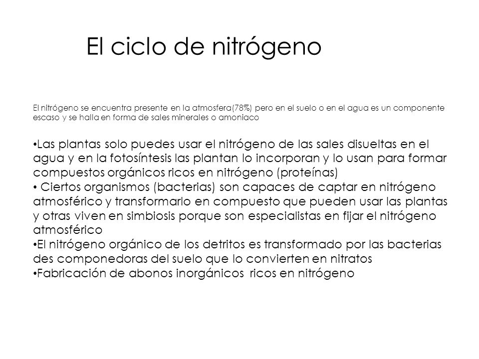 El ciclo de nitrógeno