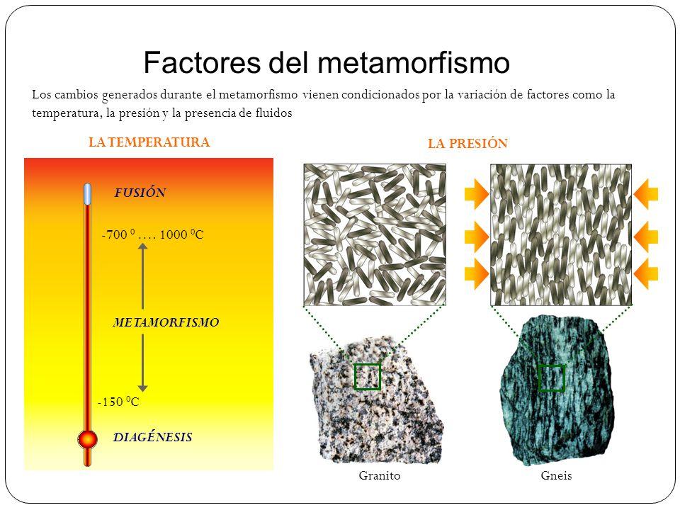 Factores del metamorfismo