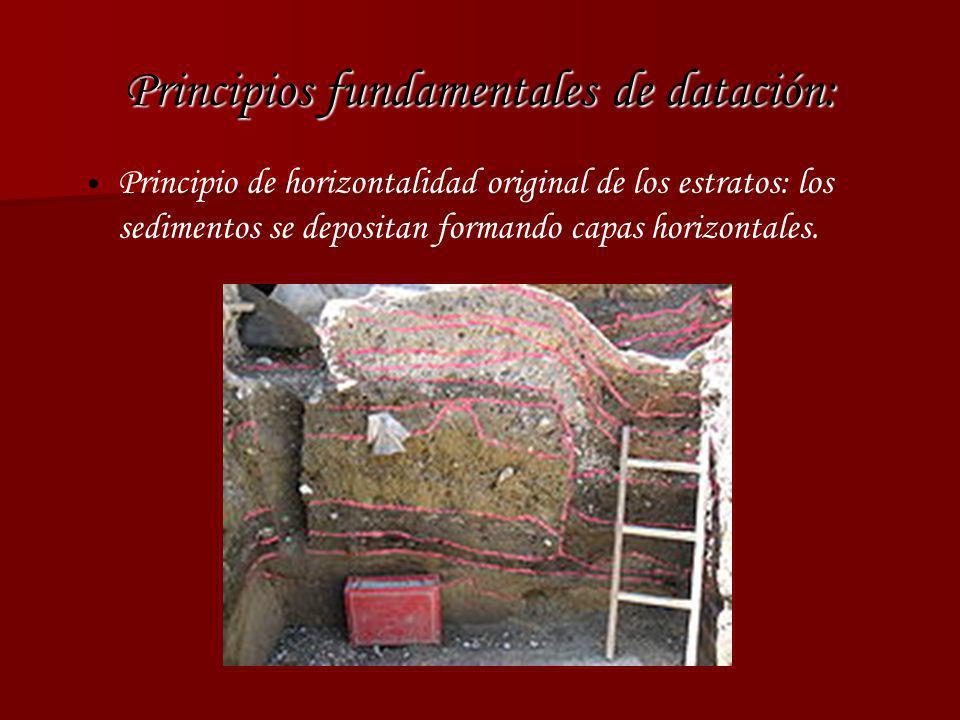 Principios fundamentales de datación: