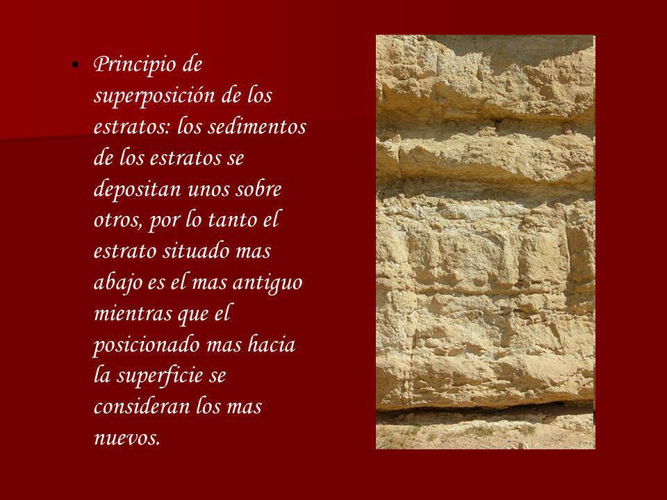 Principio de superposición de los estratos: los sedimentos de los estratos se depositan unos sobre otros, por lo tanto el estrato situado mas abajo es el mas antiguo mientras que el posicionado mas hacia la superficie se consideran los mas nuevos.