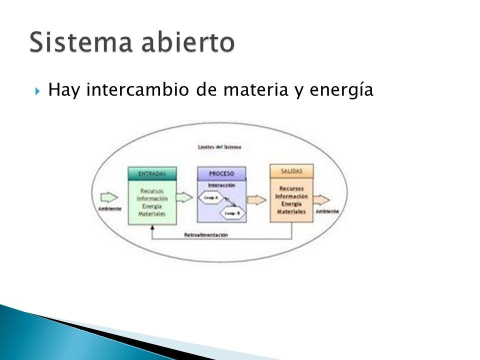 Sistema abierto Hay intercambio de materia y energía