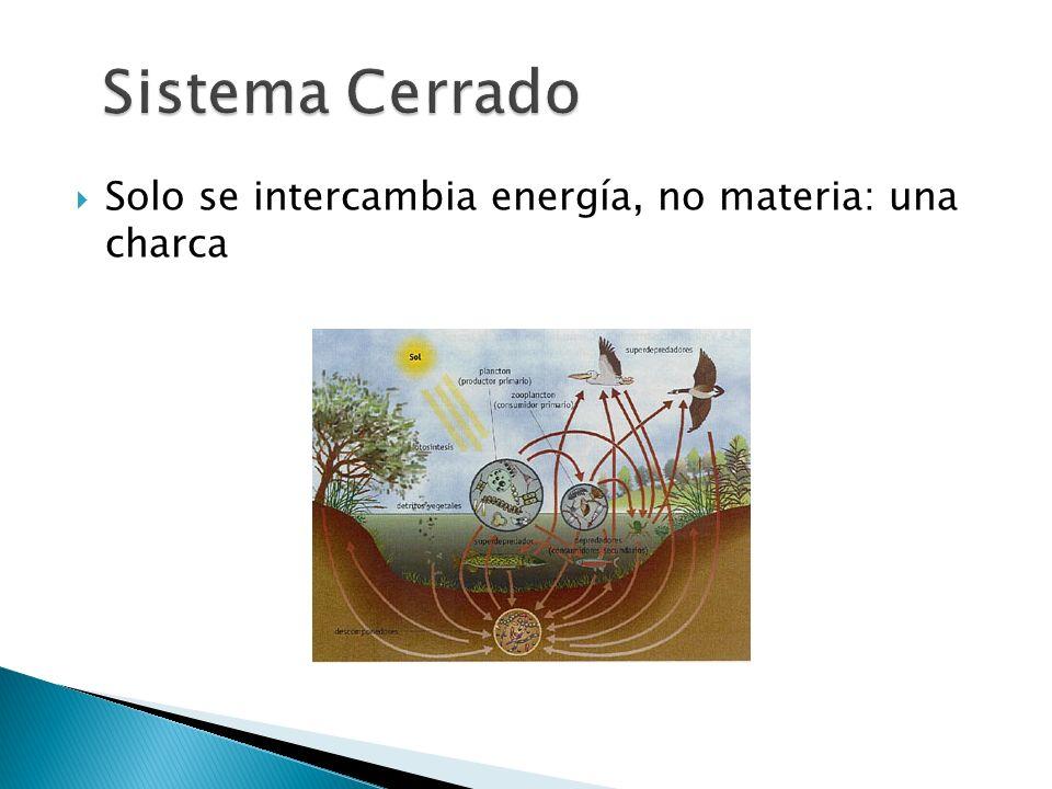 Sistema Cerrado Solo se intercambia energía, no materia: una charca