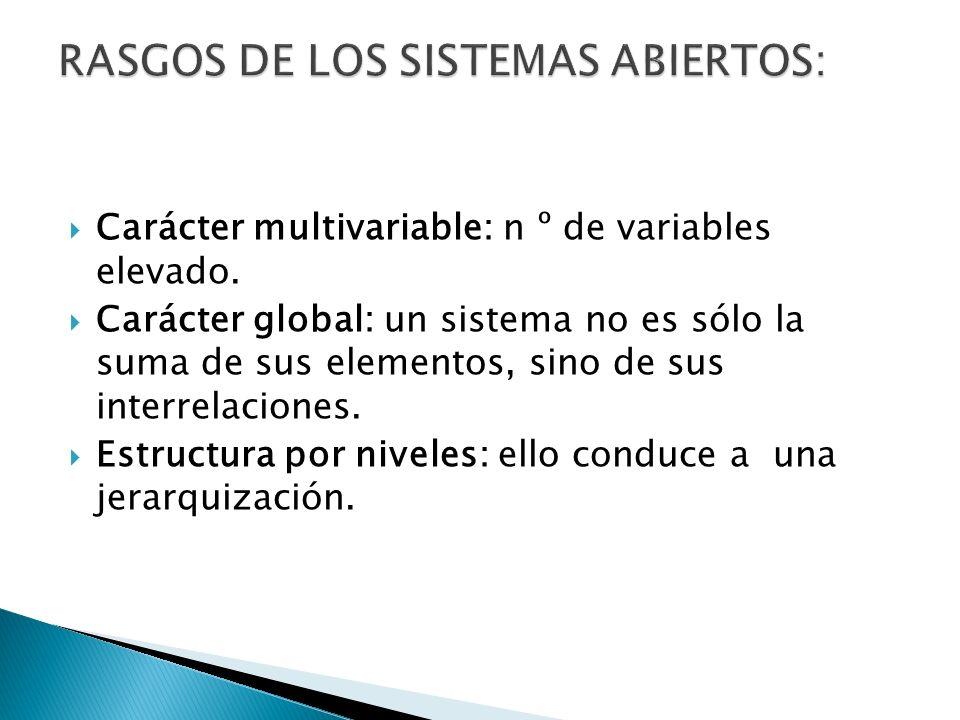 RASGOS DE LOS SISTEMAS ABIERTOS: