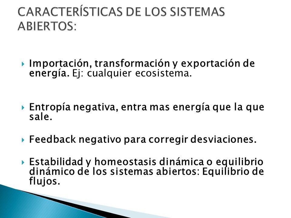 CARACTERÍSTICAS DE LOS SISTEMAS ABIERTOS: