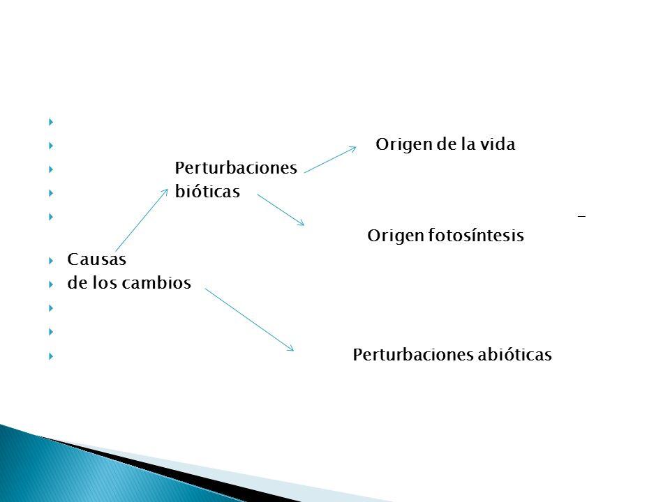 Origen de la vida Perturbaciones. bióticas. - Origen fotosíntesis. Causas. de los cambios.