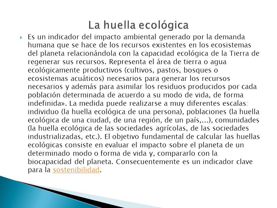 La huella ecológica