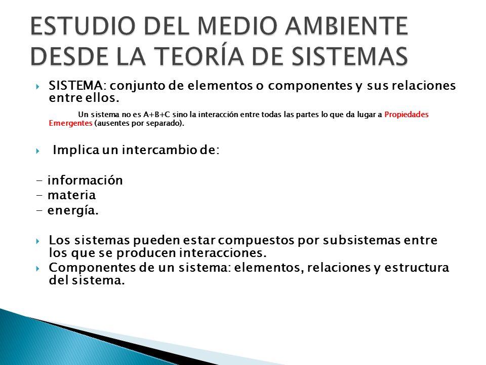 ESTUDIO DEL MEDIO AMBIENTE DESDE LA TEORÍA DE SISTEMAS