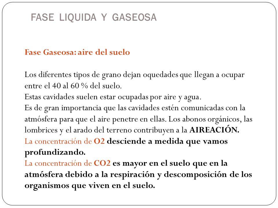 FASE LIQUIDA Y GASEOSA Fase Gaseosa: aire del suelo