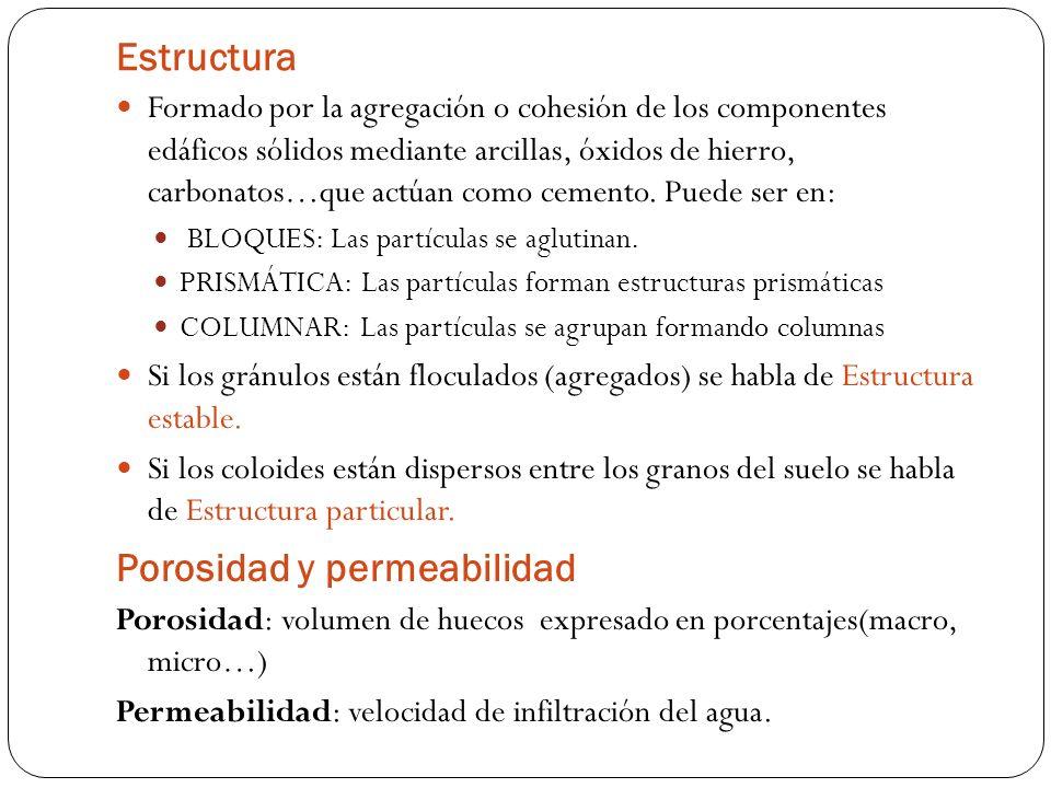 Porosidad y permeabilidad