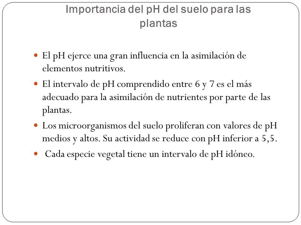 Importancia del pH del suelo para las plantas