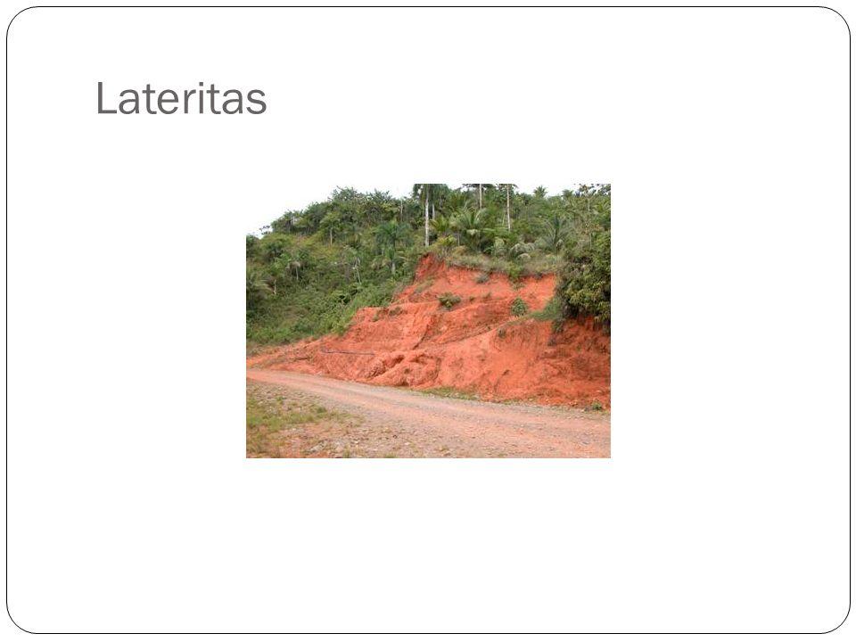 Lateritas