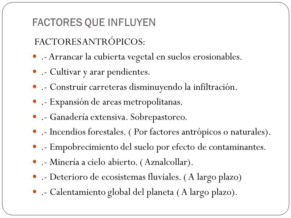FACTORES QUE INFLUYEN FACTORES ANTRÓPICOS: