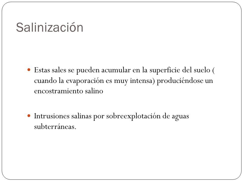 Salinización