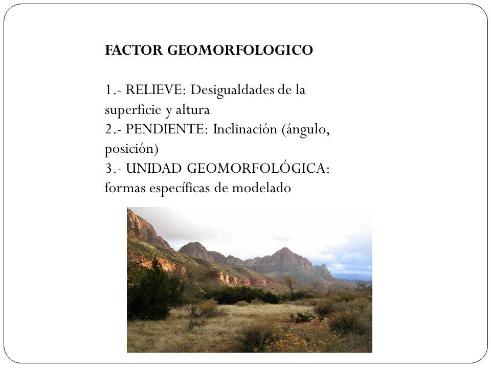 FACTOR GEOMORFOLOGICO